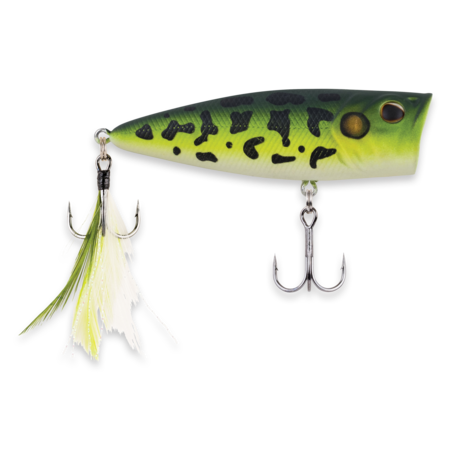 Topwater 101: Meet the family!