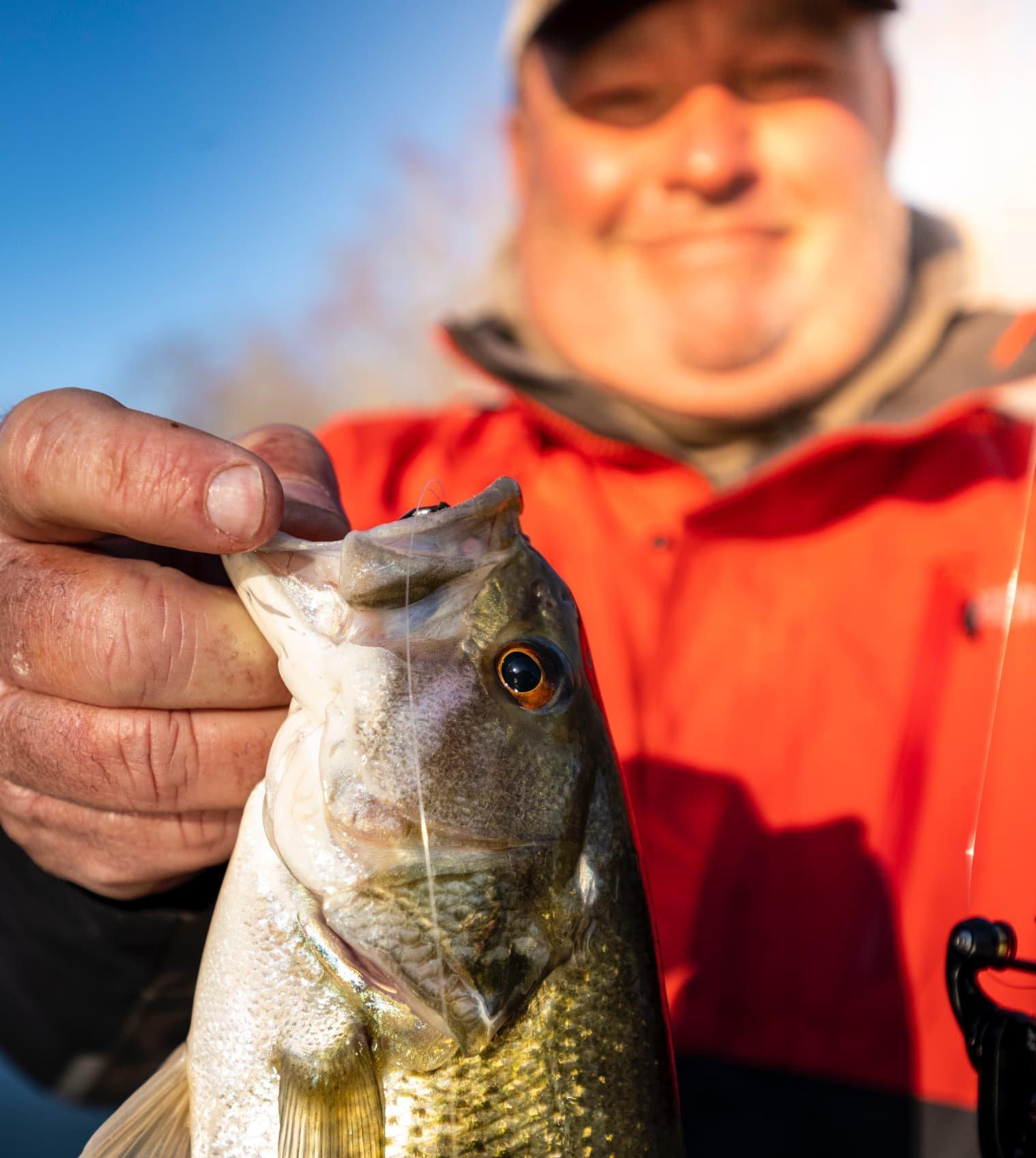 Angler holding up bass