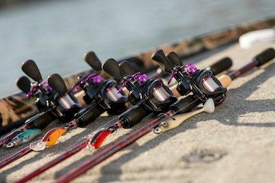 Lineup of rods