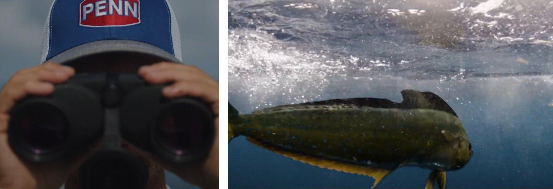 Left: person in Penn hat looking into binoculars; Right: fish swimming underwater