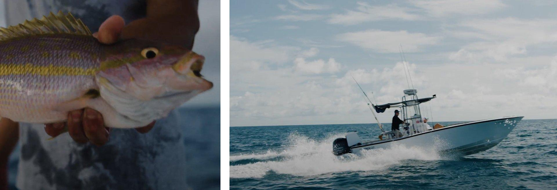 Left: Close-up of fish; Right: angler maneuvering speedboat in the water